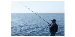 Fishing Laws in Florida