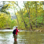 Fishing Laws in Virginia