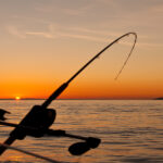 Top 10 US States for Fishing